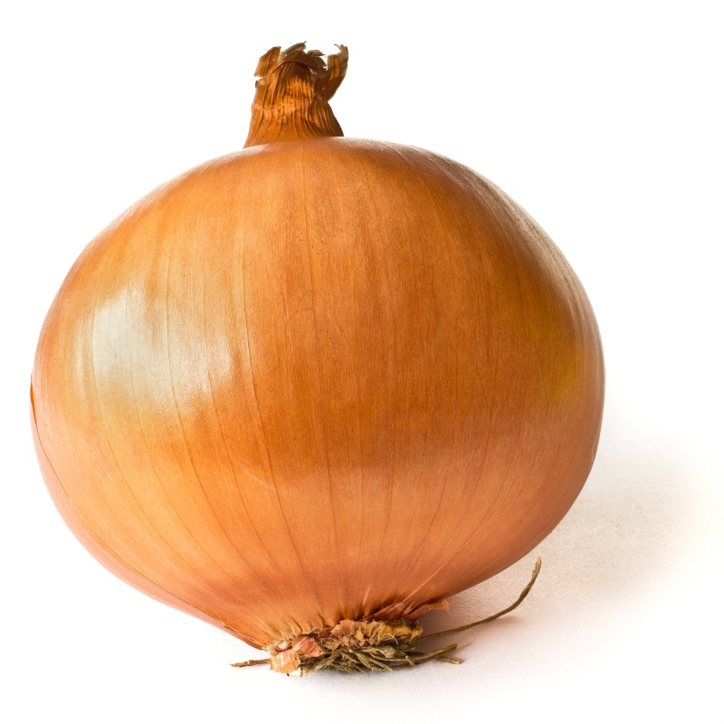 http://upload.wikimedia.org/wikipedia/commons/2/25/Onion_on_White.JPG