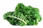 https://www.bidsbypros.com/portal/kale-a-fashionable-and-trendy-super-food-among-the-elite/