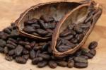 http://www.optimallyorganic.com/Cacao.htm
