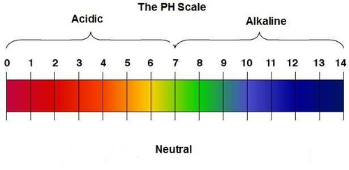 http://www.marawellness.com/blog/2014/02/body-ph-acid-vs-alkaline