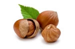 http://www.gardeningblog.net/how-to-grow/hazelnuts/