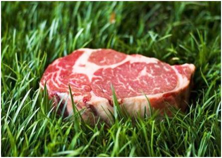 http://www.builtlean.com/2013/03/20/grass-fed-beef/